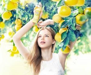 Летняя коллекция Jill Stuart Body Care Relax Grapefruit & Bergamot 2015