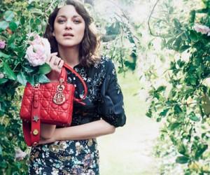 Женские сумки Dior 2017
