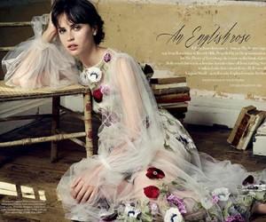 Felicity Jones для журнала Harper's Bazaar UK