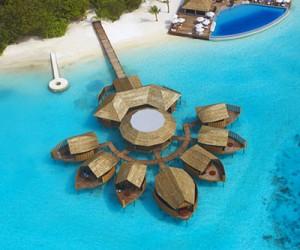 Отель Lily Beach Resort & Spa на Мальдивах