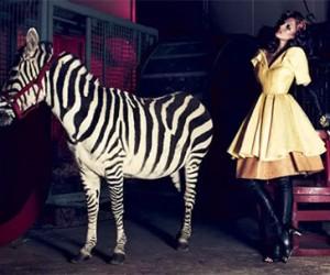 Летний выпуск Dress to Kill Magazine 2013