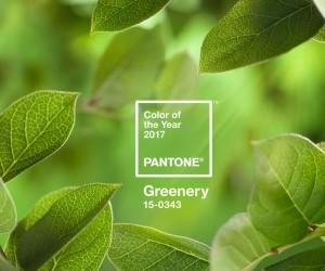 Greenery - модный цвет 2017 года