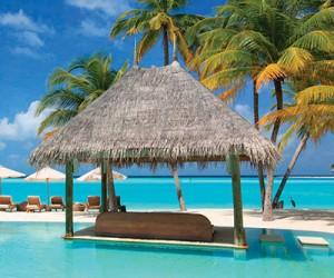 Отель Gili Lankanfushi на Мальдивах